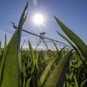 Valley Irrigation Center Pivot