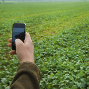 Man Holding Phone in field