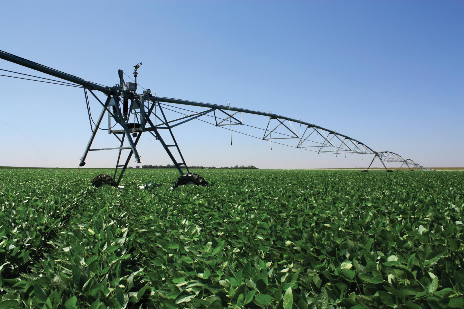 VFlex Corn Valley Irrigation